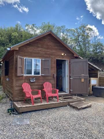 15734 Lariat Loop, Collbran, CO 81624 (MLS #20214445) :: Lifestyle Living Real Estate