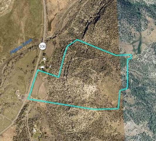 TBD Highway 330, Collbran, CO 81624 (MLS #20214453) :: Lifestyle Living Real Estate