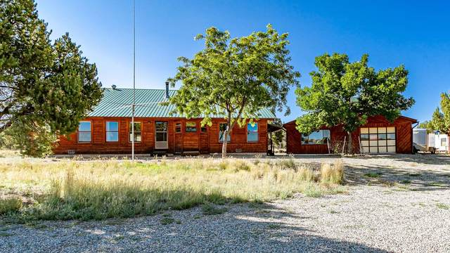4081 S 9 8/10 Road, Glade Park, CO 81523 (MLS #20214498) :: The Grand Junction Group with Keller Williams Colorado West LLC