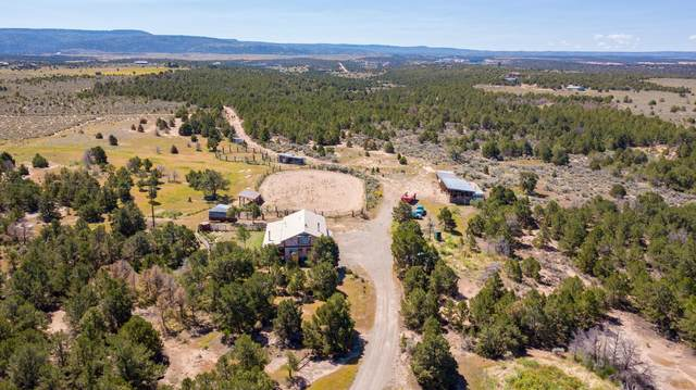 15341 Ds Road, Glade Park, CO 81523 (MLS #20214535) :: The Grand Junction Group with Keller Williams Colorado West LLC
