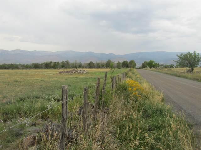 13289 58 Road, Collbran, CO 81624 (MLS #20214611) :: The Joe Reed Team