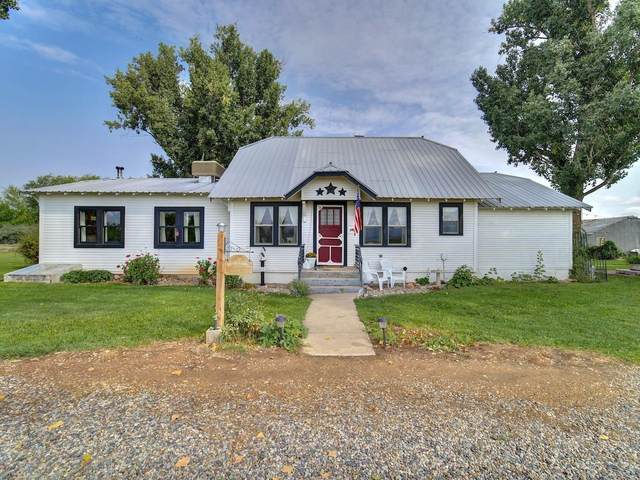 1614 12 Road, Loma, CO 81524 (MLS #20214625) :: Lifestyle Living Real Estate