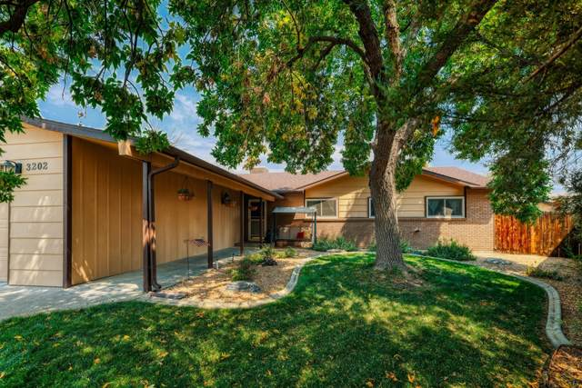 3202 Primrose Court, Grand Junction, CO 81506 (MLS #20214652) :: The Kimbrough Team   RE/MAX 4000