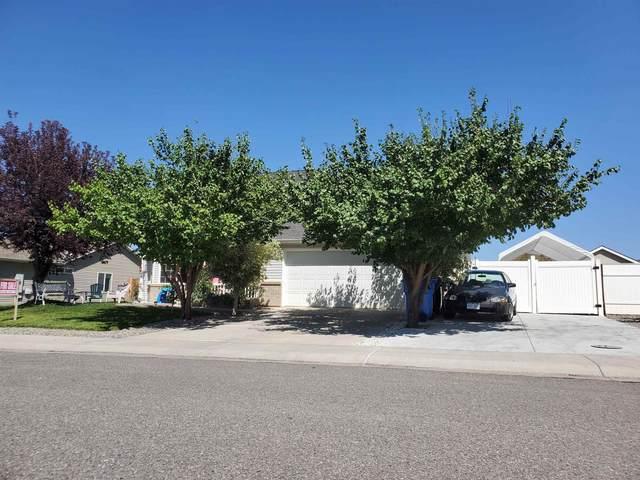 2757 Tender Drive, Montrose, CO 81401 (MLS #20214741) :: Michelle Ritter