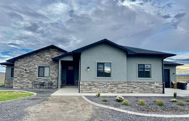 1348 Robinson Court, Mack, CO 81525 (MLS #20214919) :: The Kimbrough Team | RE/MAX 4000