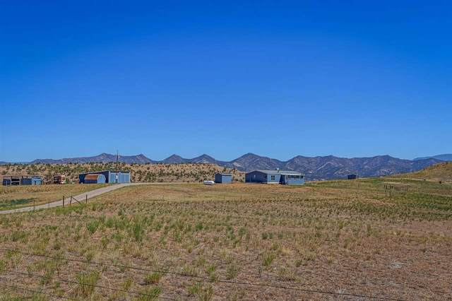1600 Six Lazy K Road, New Castle, CO 81647 (MLS #20214931) :: Lifestyle Living Real Estate