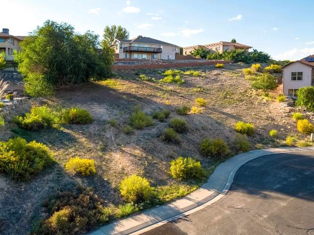 569 Casa Rio Court, Grand Junction, CO 81507 (MLS #20214943) :: Lifestyle Living Real Estate