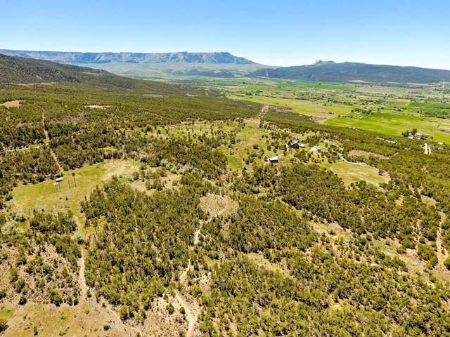 TBD Eagles Way, Mesa, CO 81643 (MLS #20214998) :: Lifestyle Living Real Estate