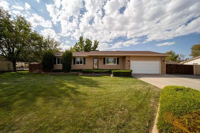 2883 Caboose Avenue, Grand Junction, CO 81503 (MLS #20215046) :: Lifestyle Living Real Estate