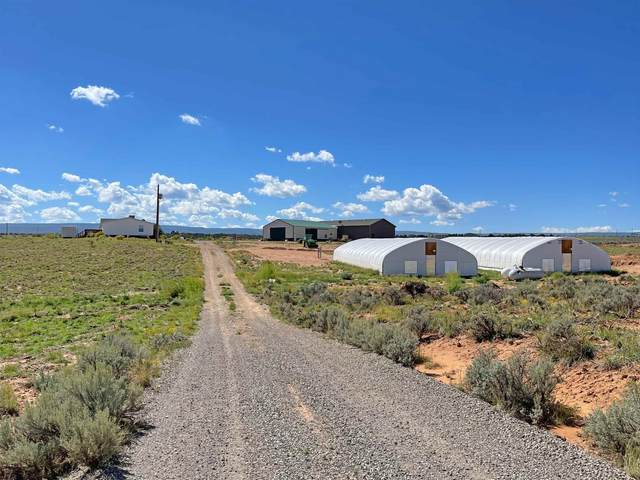 12500 Bs Road, Glade Park, CO 81523 (MLS #20215051) :: The Kimbrough Team | RE/MAX 4000