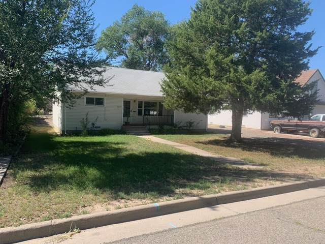 1123 Meeker Street, Delta, CO 81416 (MLS #20215054) :: Lifestyle Living Real Estate