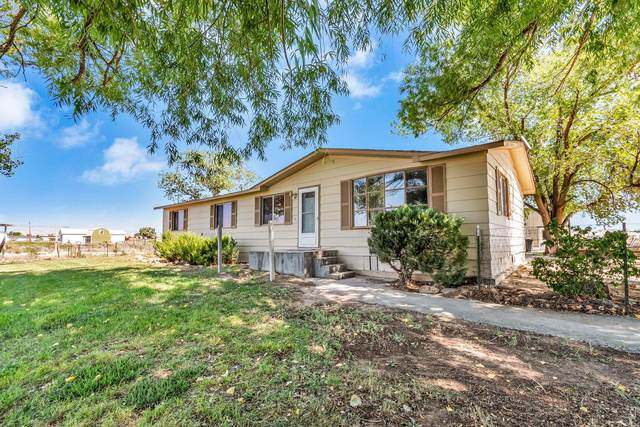1340 14 Road, Loma, CO 81524 (MLS #20215083) :: Michelle Ritter