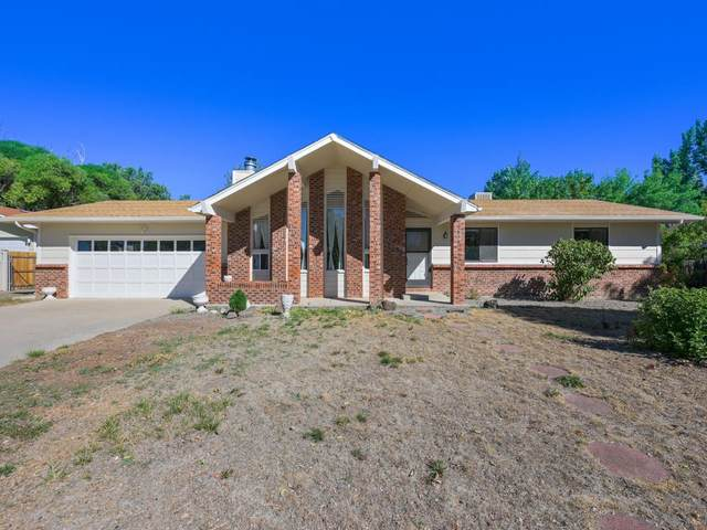 584 Starlight Drive, Grand Junction, CO 81504 (MLS #20215121) :: The Christi Reece Group