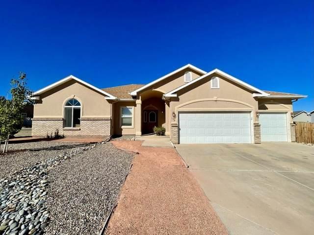 133 Buena Vista Drive, Grand Junction, CO 81503 (MLS #20215128) :: The Joe Reed Team