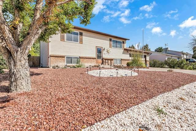 3040 Gunnison Avenue, Grand Junction, CO 81504 (MLS #20215131) :: The Christi Reece Group