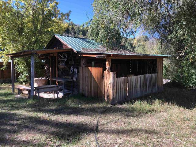 56486 Highway 330, Collbran, CO 81624 (MLS #20215204) :: The Kimbrough Team | RE/MAX 4000