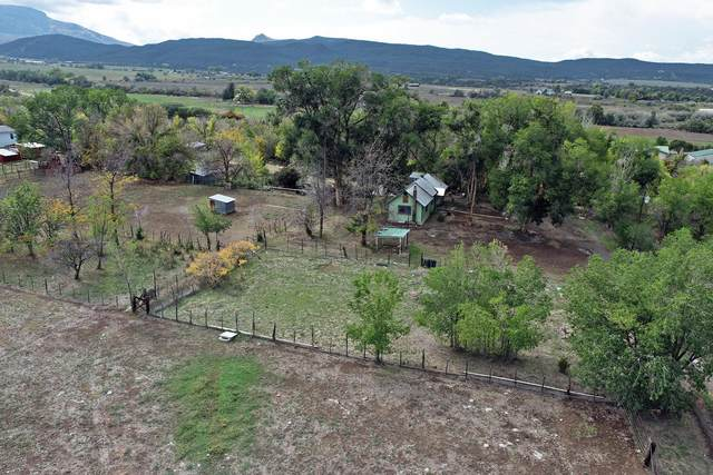 10377 Highway 65, Mesa, CO 81643 (MLS #20215320) :: The Kimbrough Team | RE/MAX 4000