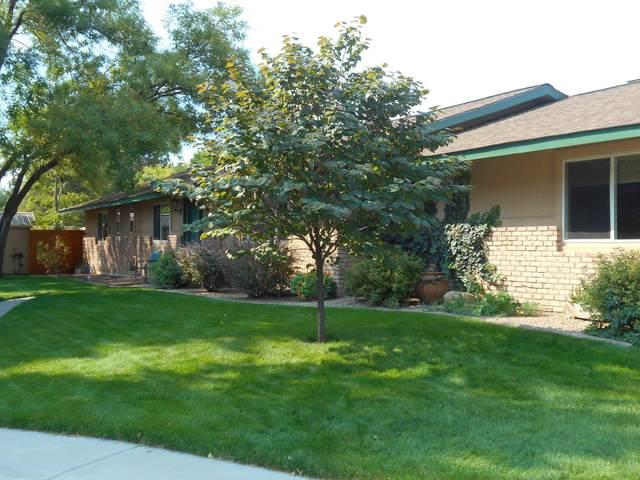 380 Mcfarland Court, Grand Junction, CO 81501 (MLS #20215329) :: The Joe Reed Team