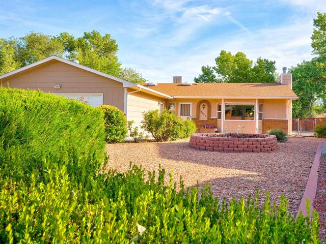 612 1/2 E Indian Creek Drive, Grand Junction, CO 81506 (MLS #20215377) :: The Christi Reece Group