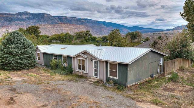 758 37 8/10 Road, Palisade, CO 81526 (MLS #20215384) :: The Grand Junction Group with Keller Williams Colorado West LLC