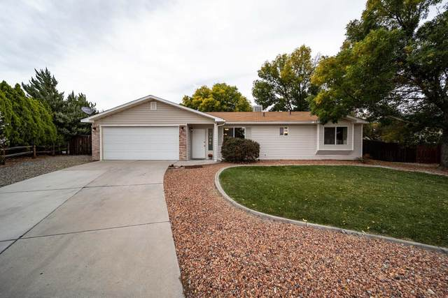 3096 Canyon Trail Court, Grand Junction, CO 81504 (MLS #20215531) :: Michelle Ritter