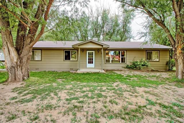 337 Rosevale Road, Grand Junction, CO 81507 (MLS #20215565) :: CENTURY 21 CapRock Real Estate