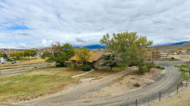 3770 Blair Road, Whitewater, CO 81527 (MLS #20215570) :: The Christi Reece Group