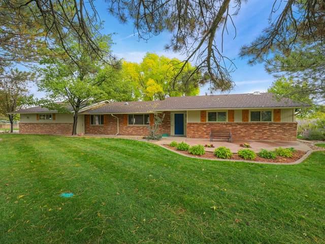 546 Shank Court, Grand Junction, CO 81507 (MLS #20215582) :: CENTURY 21 CapRock Real Estate