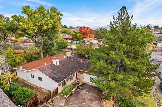 391 1/2 W Valley Circle, Grand Junction, CO 81507 (MLS #20215622) :: Lifestyle Living Real Estate