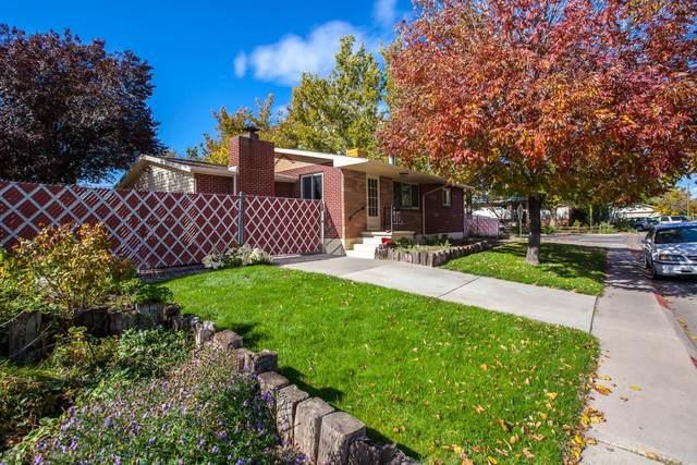 2049 N 10th Street, Grand Junction, CO 81501 (MLS #20215650) :: The Christi Reece Group