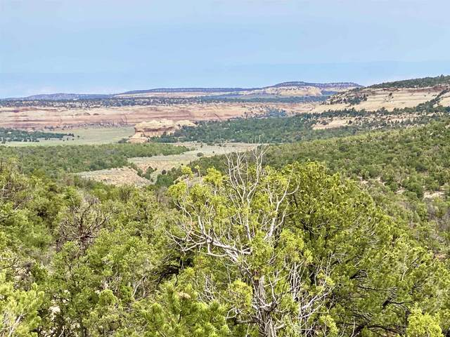 TBD 9 8/10 Road, Glade Park, CO 81523 (MLS #20215681) :: The Kimbrough Team | RE/MAX 4000