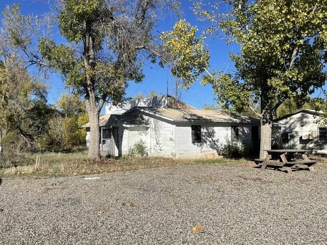 1310 Garfield Street, Loma, CO 81524 (MLS #20215693) :: The Christi Reece Group