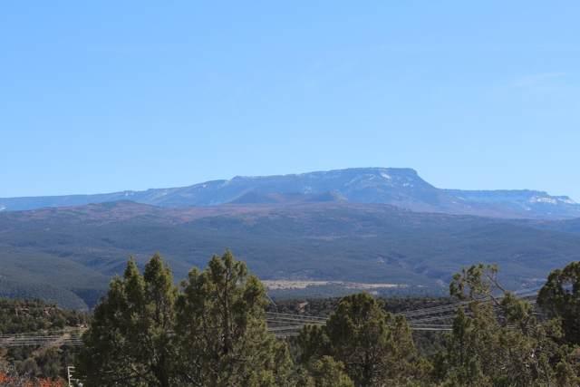 4463 Horse Canyon Road, De Beque, CO 81630 (MLS #20215697) :: The Kimbrough Team | RE/MAX 4000