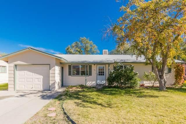 560 Princess Street, Grand Junction, CO 81501 (MLS #20215698) :: The Christi Reece Group
