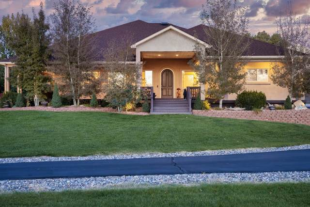 894 25 Road, Grand Junction, CO 81505 (MLS #20215701) :: The Christi Reece Group
