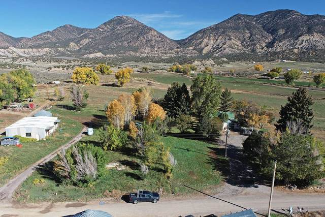 213 County Road 259A, Silt, CO 81652 (MLS #20215717) :: The Kimbrough Team | RE/MAX 4000