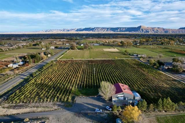 220 32 Road, Grand Junction, CO 81503 (MLS #20215802) :: Michelle Ritter