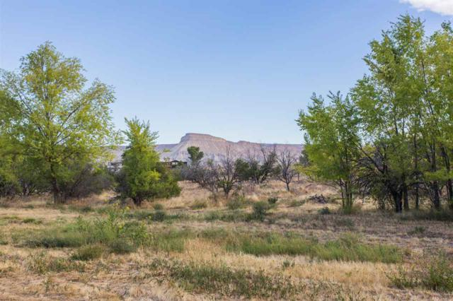 3439 D Road, Palisade, CO 81526 (MLS #684450) :: The Christi Reece Group