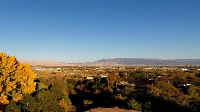 436 High Pointe Circle, Grand Junction, CO 81507 (MLS #20170573) :: The Christi Reece Group