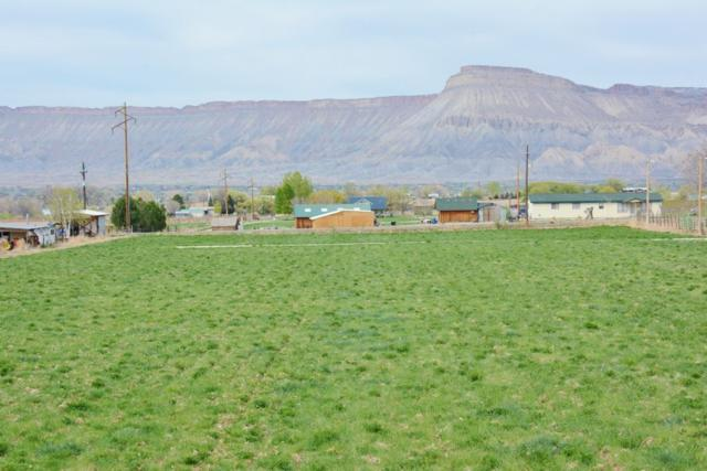 TBD C 1/2 Road, Palisade, CO 81526 (MLS #20171792) :: The Christi Reece Group