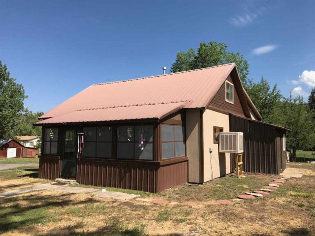 3041 Pinion Street, Collbran, CO 81624 (MLS #20173678) :: The Christi Reece Group