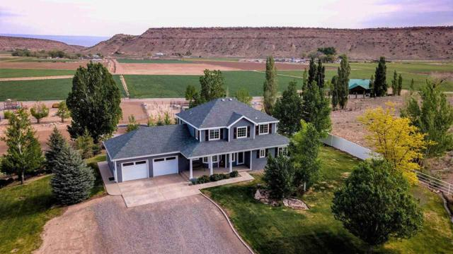 16254 5790 Trail, Montrose, CO 81403 (MLS #20174737) :: The Borman Group at eXp Realty