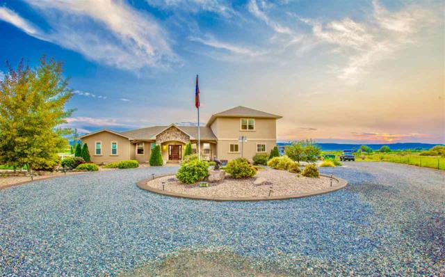 229 31 3/10 Road, Grand Junction, CO 81503 (MLS #20174777) :: The Christi Reece Group
