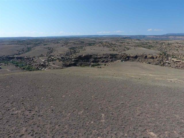 TBD Siminoe Road, Whitewater, CO 81527 (MLS #20174980) :: The Grand Junction Group