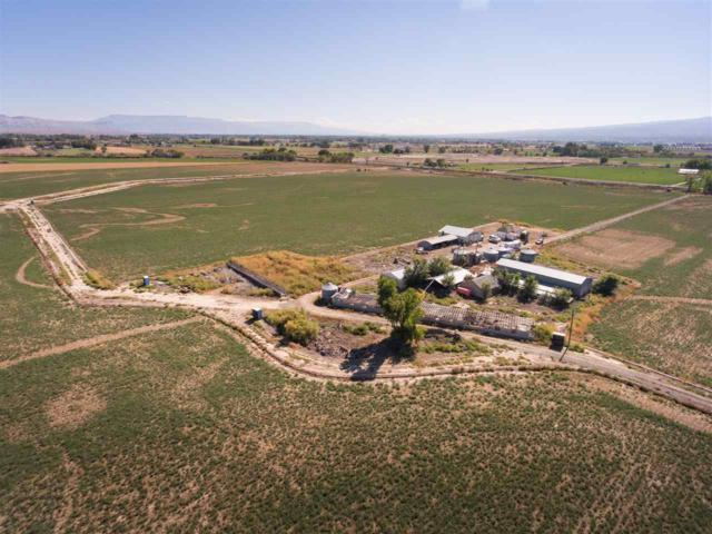 1102 21 Road, Grand Junction, CO 81505 (MLS #20175220) :: The Christi Reece Group