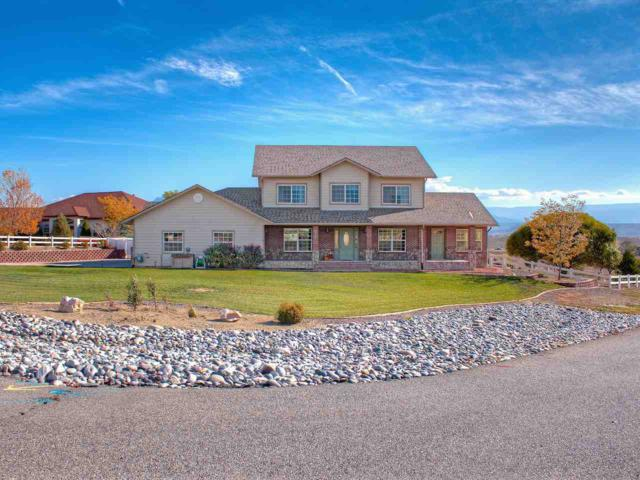 1416 Proctor Court, Whitewater, CO 81527 (MLS #20175528) :: The Grand Junction Group