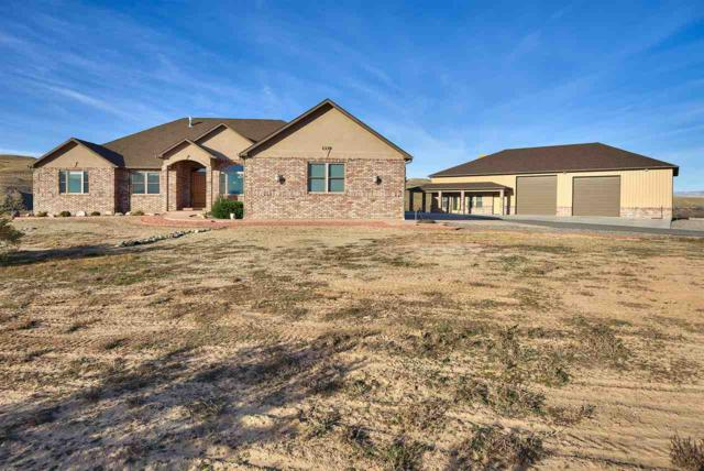 1339 Robinson Court, Mack, CO 81525 (MLS #20175556) :: The Christi Reece Group