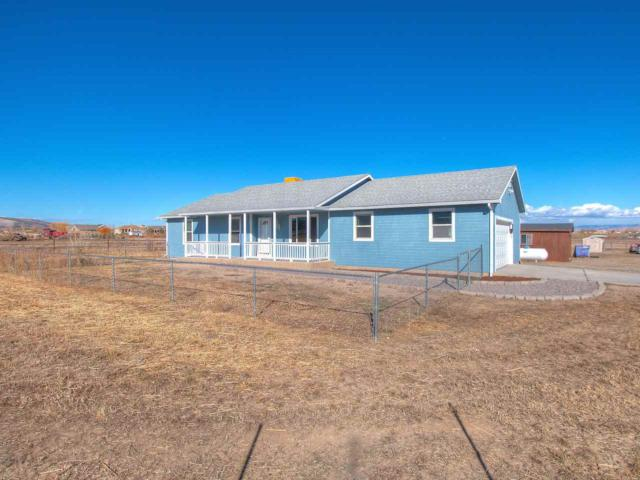 1326 L 1/2 Road, Loma, CO 81524 (MLS #20175728) :: Keller Williams CO West / Mountain Coast Group