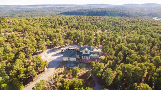 19771 Miller Canyon Ranch Road, Glade Park, CO 81523 (MLS #20176187) :: The Grand Junction Group