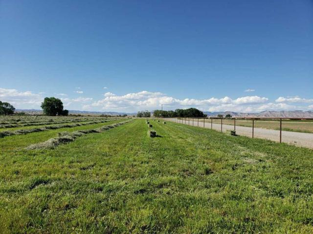 1599 15 Road, Loma, CO 81524 (MLS #20180522) :: The Christi Reece Group